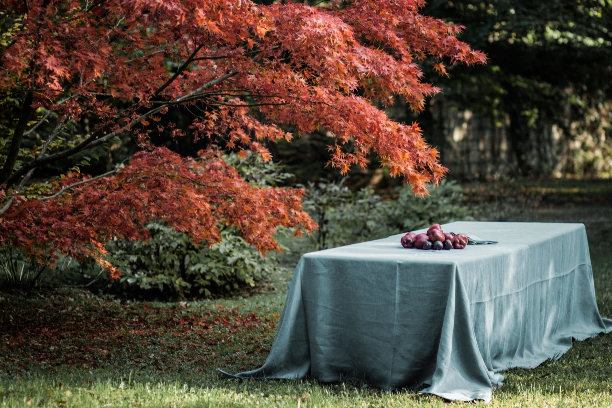 Tablecloth - Once Milano